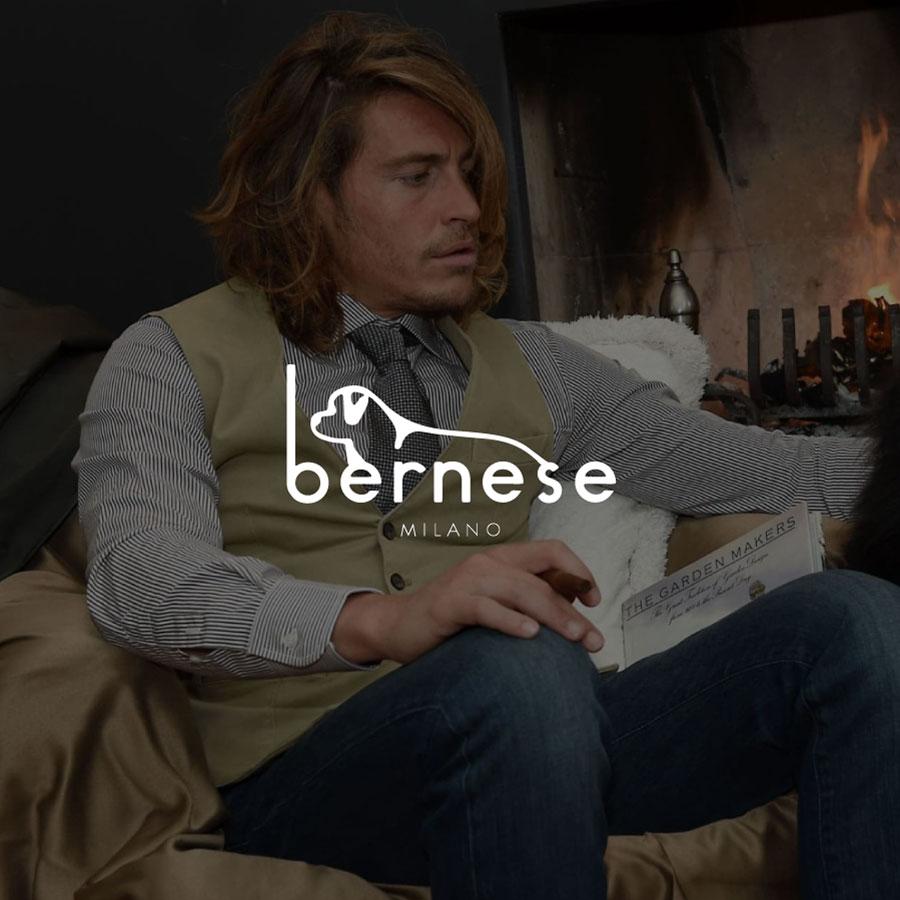 bernese-3